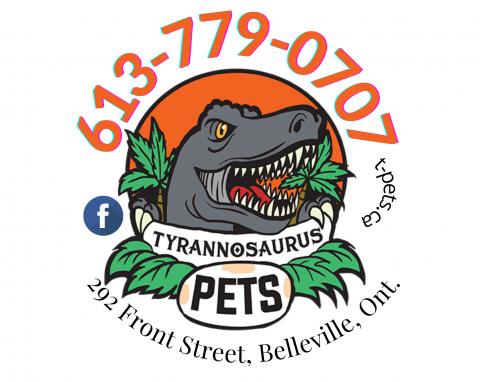 Tyrannosuaurs pets